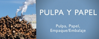Pulpa y Papel
